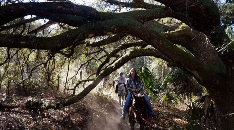 Horseback trail riding in Ocala