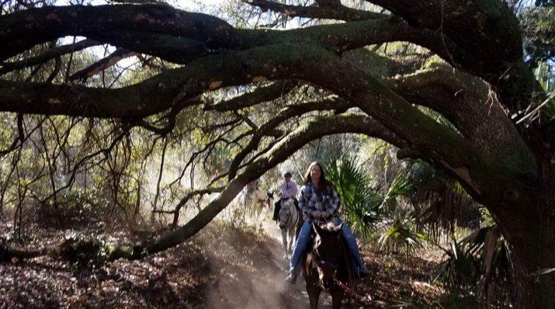 Horseback trail riding in Ocala