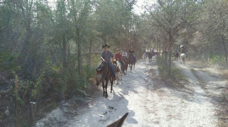 Horseback trail riding Ocala Florida
