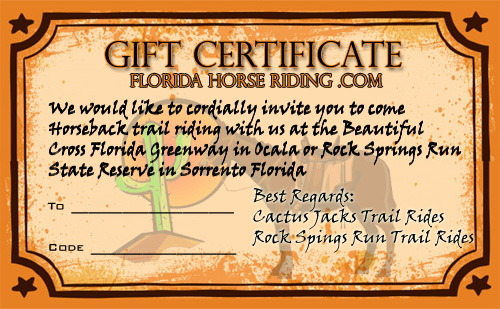 Horseback Riding Gift Certificates