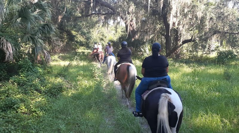 Rock Springs Run Horseback Trail riding