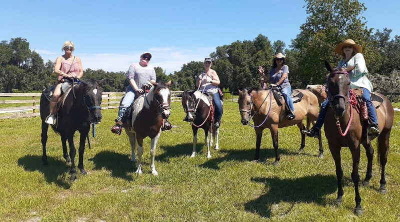Horse Trail ride in Orlando Florida Rock Springs run